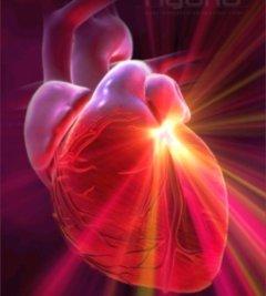 heart-brainMFL