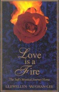 love-is-fire-sufis-mystical-journey-home-llewellyn-vaughan-lee-paperback-cover-art