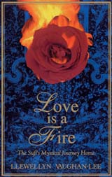lovefire_larger